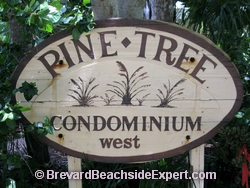 Pine Tree, Indian Harbour Beach - Real Estate, For Sale, For Rent, Listings